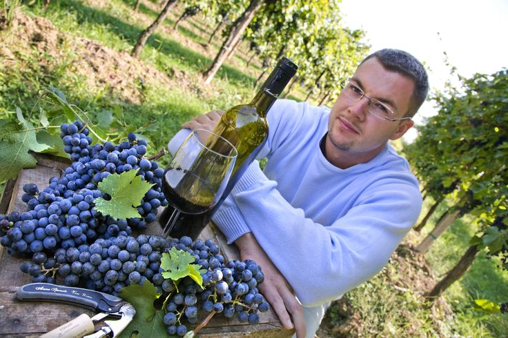Roberto, Marketing and Wine Specialist of Winery