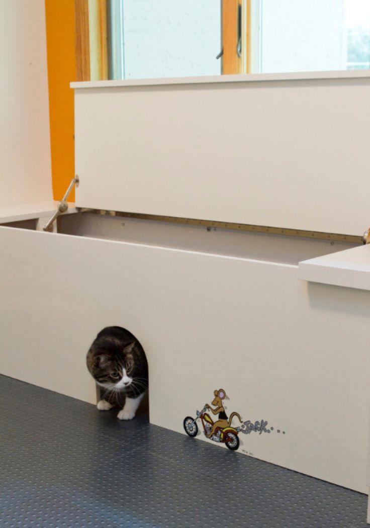 10 lugares para esconder a caixa de areia de gato e manter o décor lindo