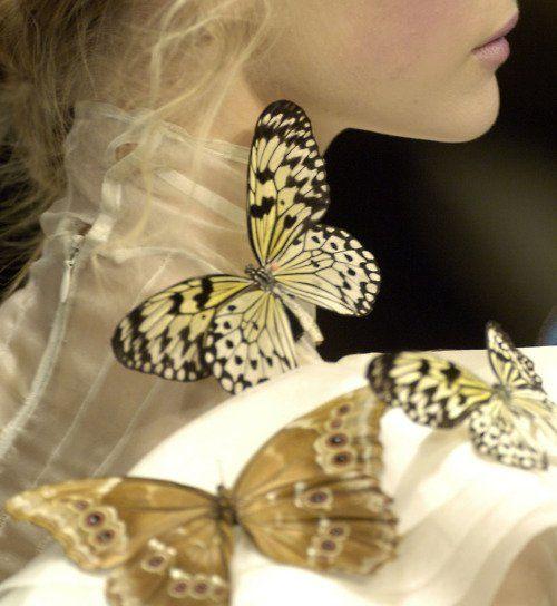 Marvelous Schmetterlinge Gemma Ward Medium Haare Ein Schmetterling Schmetterling T towierungen Sch ne Schmetterlinge Motte Mode Details High Fashion