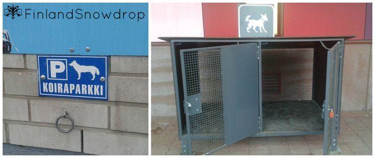How to park your dog while shopping? // Koiraparkki // Kde odložit svého psa zatímco nakupujete?