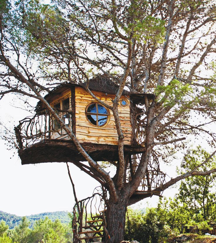 Treehouse Masters Treehouse Point: 662 Best Images About Living In The Trees On Pinterest