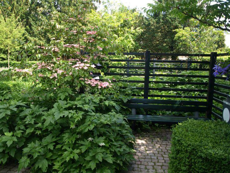 Transparent sort hegn i grønne omgivelser.