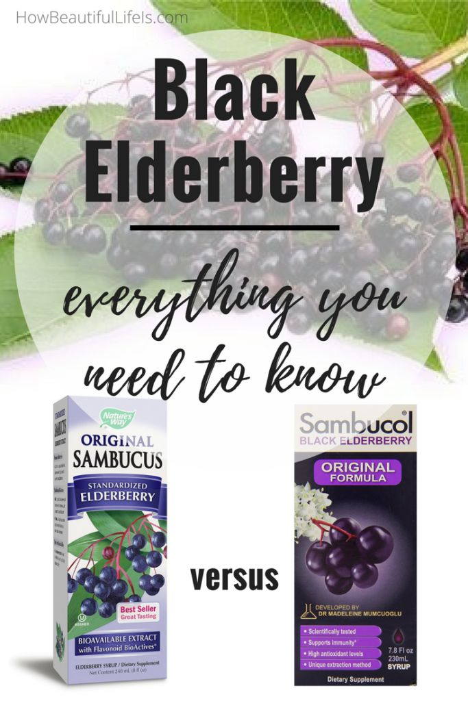 Black Elderberry's powerful antioxidants can significantly reduce the symptoms and duration of infections such as cold, influenza and H1N1. Discover the health benefits of Black Elderberry, how to use it to treat cold and flu, and a detailed comparison of Sambucus and Sambucol.