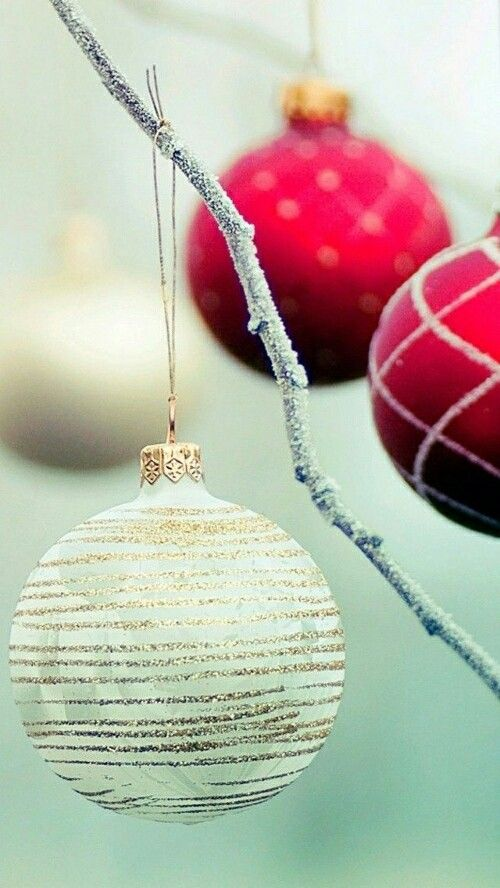 Merry Christmas to those who follow my Boards! PS - Remember the real reason for the season - JESUS CHRIST - God Bless u all