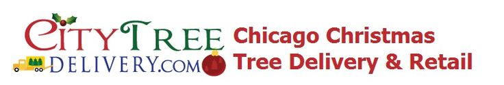 Chicago's best Fraser Fir Christmas Tree delivered, setup, and removed – City Tree Delivery