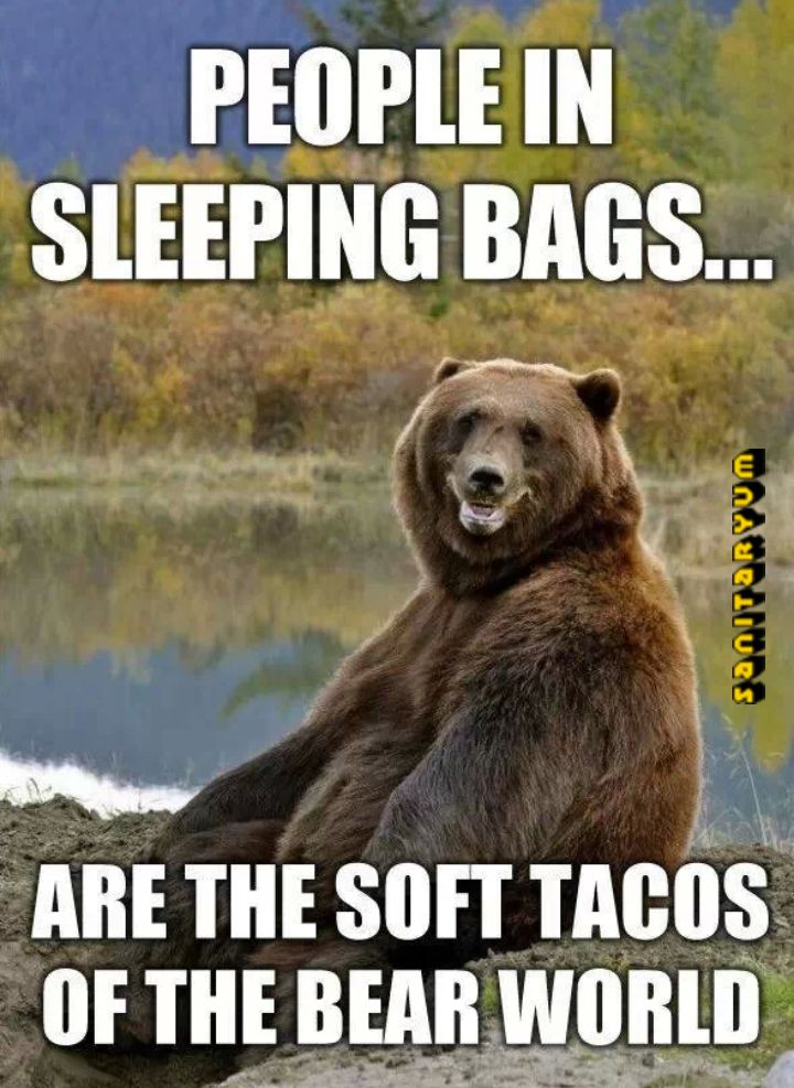 This is beary true. -D