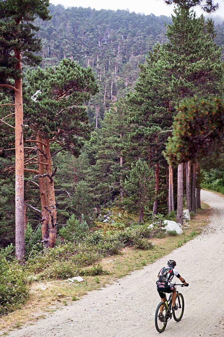 Seis escapadas en bici por Madrid, para alejarnos un poco de la ciudad Country Roads, Destinations, Elopements, National Parks, Woods, Country, Cities, Scenery, Travel Destinations