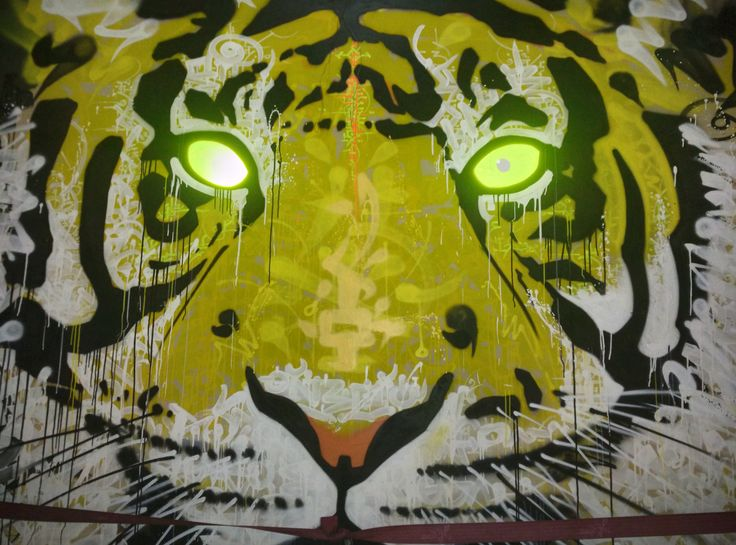 Graffiti in Bangalore. Eyes were painted with reflective paint.