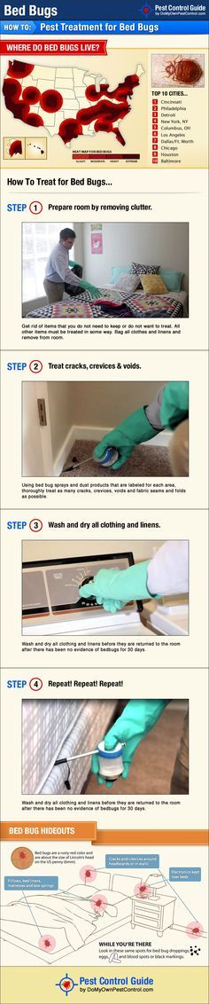 Bed Bug treatment guide showing how to get rid of bed bugs without hiring an exterminator.
