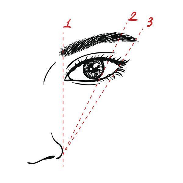 Советы экспертов по макияжу бровей