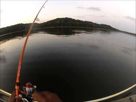 1000 images about fish caught using 123 fishing products for White perch fishing rigs