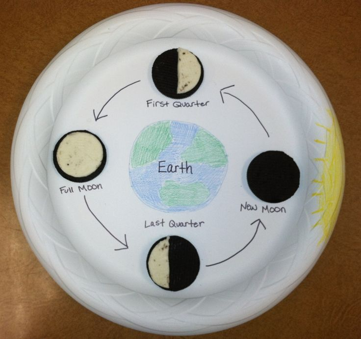moon phases project Turn the moon phases wheel until the moon phase matches the calendar wheel moon phase use the view on earth pointer to line up the two matching phases.