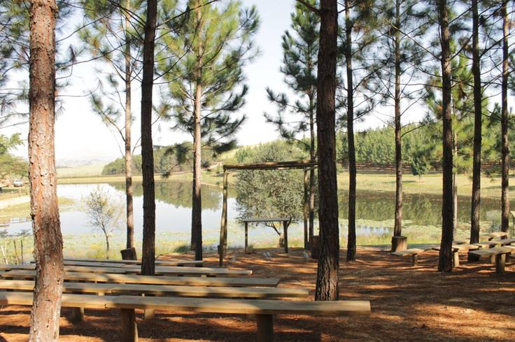Are you looking for a forest wedding? Torwoodlea Lodge is a breath taking venue. ronabartels@me.com