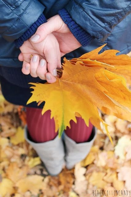 leaves in my hand by BlackCottonCandy