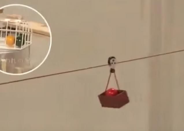 This Japanese Rube Goldberg Machine is a true adventure | Sciencedump