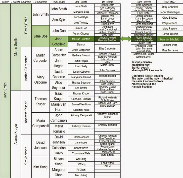 221 best Family Tree Charts & Forms images on Pinterest ...