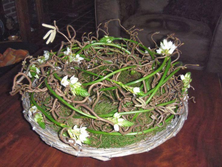 1000+ images about bloemschikken on Pinterest   Floral arrangements, Tes and Spring
