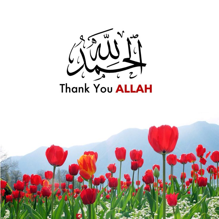 """""""Thank You Allah""""  I was so far from you Yet to me you were always so close I wandered lost in the dark I closed my eyes toward the signs You put in my way I walked everyday further and further away from you  Ooooo Allah, you brought me home I thank you with every breath I take  الحمد لله الحمد لله All praises just to Allah"""