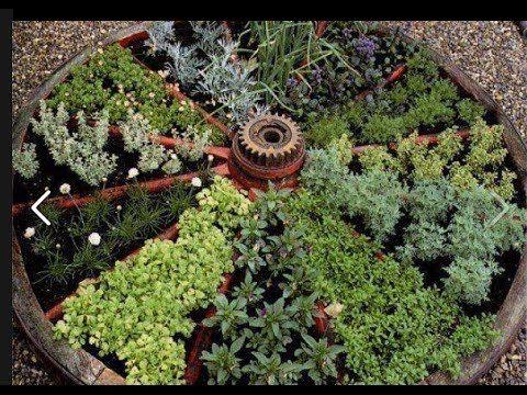 Клумба из пряных трав и салатов, монастырский садик - YouTube