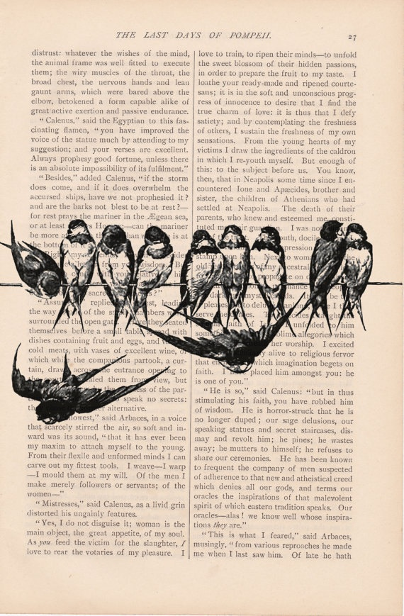 dictionary art vintage BIRDS on a WIRE no. 1 print - vintage art book page print - dictionary bird art print. $9,00, via Etsy.