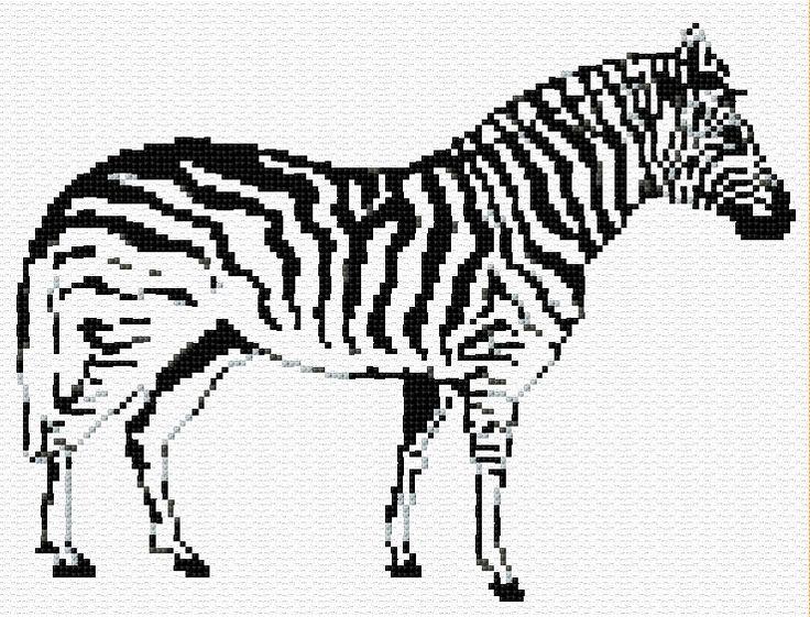 114 best Zebra theme images on Pinterest  Zebras Zebra art and