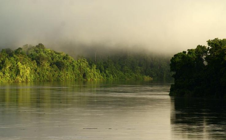 View Sungai Mamberamo diwaktu pagi