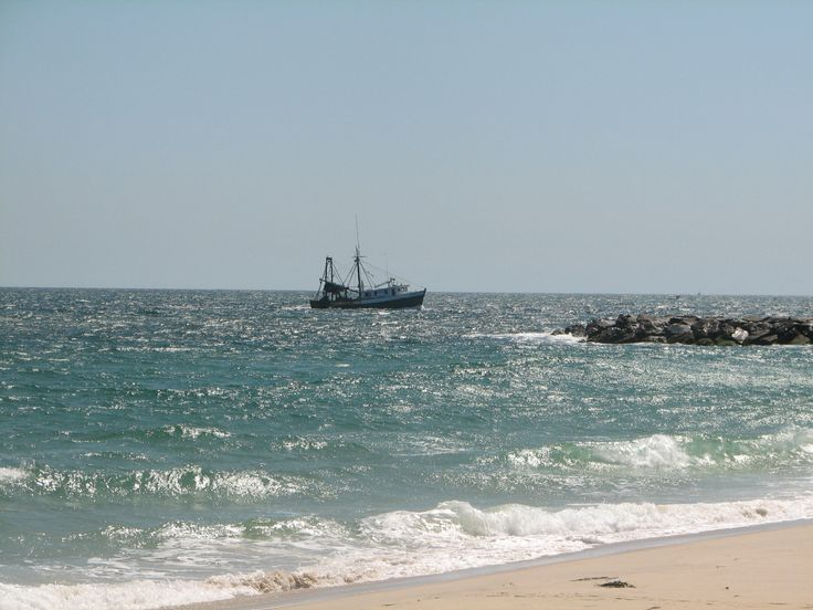 Carrier Dealers Long Island