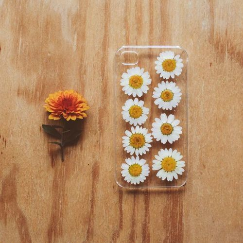 Collect and press flowers into journal. Use later for projects like phone cases.