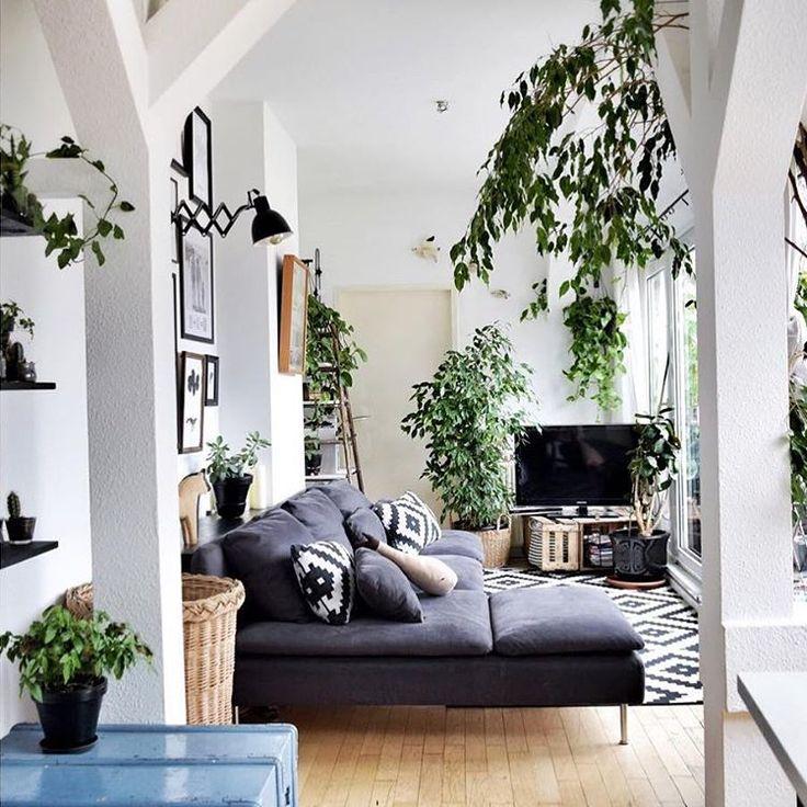 """Gefällt 8,617 Mal, 27 Kommentare - IKEA Deutschland (@ikeadeutschland) auf Instagram: """"Große Pflanzenliebe bei @pinoekels. #IKEAregram #Söderhamn #meinIKEA #zuhausebei"""""""