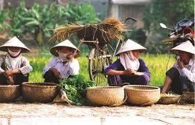vietnam holiday - Google Search
