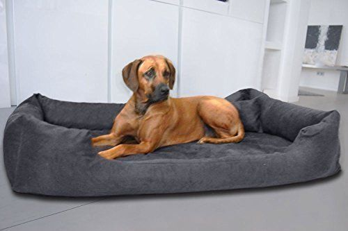 Aus der Kategorie Betten  gibt es, zum Preis von EUR 89,95  Orthopädisches Hundebett PLUTO mit VISCO Schaum! Das wunderschöne und stylische Hundebett PLUTO ORTHO VISCO von tierlando® ist in 30 Farben und in den Größen PLV-3 M (Außenmaß 80 x 60cm) Innen ca. 60 x 45cm PLV-4 L (Außenmaß 100 x 80cm) Innen ca. 75 x 60cm PLV-5 XL (Außenmaß 120 x 90cm) Innen ca. 95 x 65cm PLV-6 XXL (Außenmaß 150 x 100cm) Innen ca. 125 x 75cm konzipiert worden Matratze: PLUTO ORTHO VISCO von tierlando®: dem…