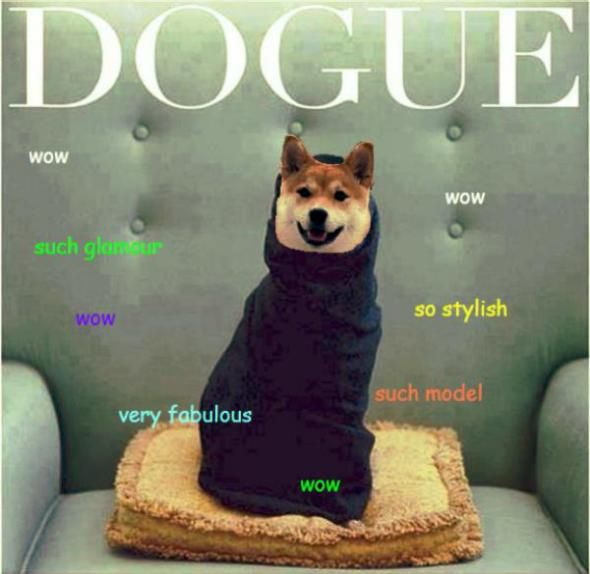 Doge: Why we can't agree on how to pronounce the internet meme ...