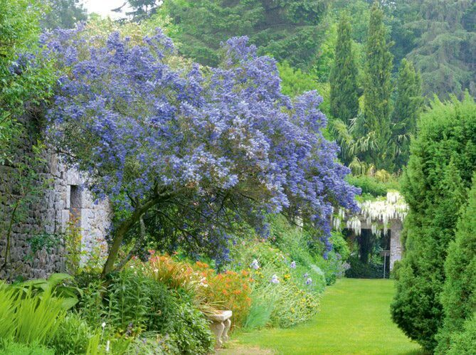 Oltre 25 fantastiche idee su giardini rustici su pinterest for Cottage di campagna francesi