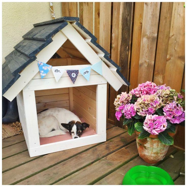 DIY Hundehütte selber machen