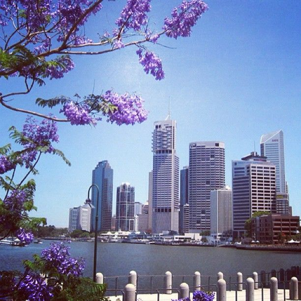 The River City, Brisbane #thisisqueensland #instagram