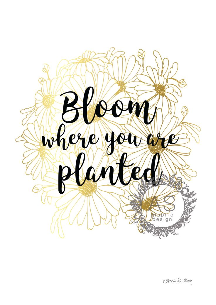 """Gold -""""Bloom Where You Are Planted"""" PRINTABLE ART, Coloured Daisy, Circle, Home art, Inspirational Quote, Coloured Print by AnnaSpilsburyDesign on Etsy https://www.etsy.com/au/listing/470886058/gold-bloom-where-you-are-planted"""