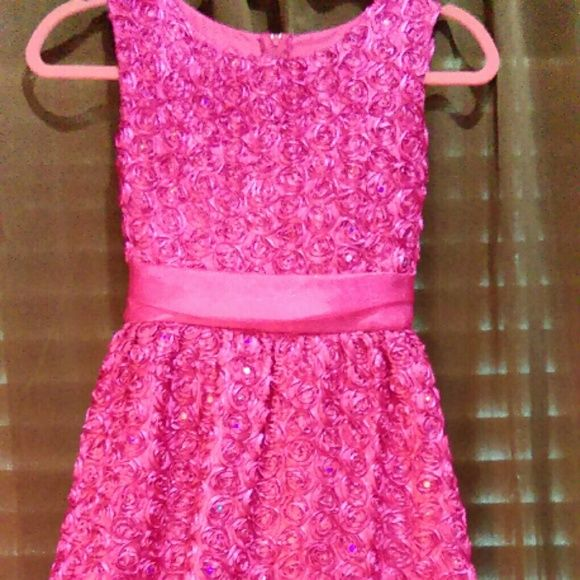 Covered in roses  Hot Pink roses on hot pink dress Hot pink sequins in the Center of each Rose Sleeveless and tea length Sheer hot pink ribbon ties around the back at the waist. Beautiful quality material in very good condition. Girls size 14 Just in time for Easter! Dresses