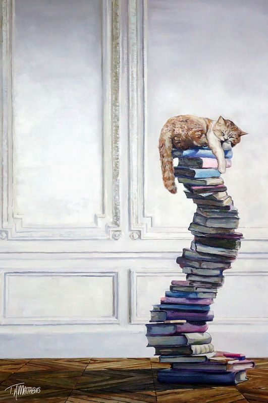 Chat - Dormir - Livre / Cat - Sleeping - Book