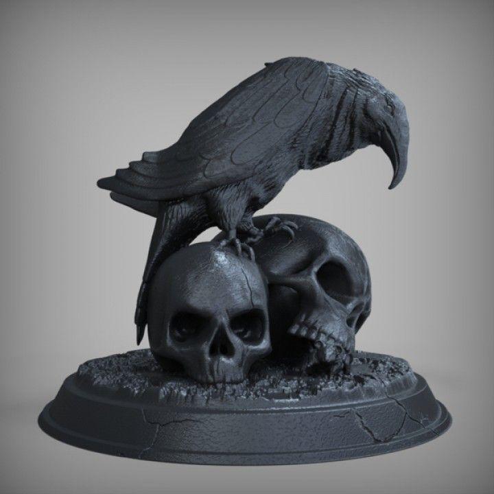 фото ворона на черепе примеру