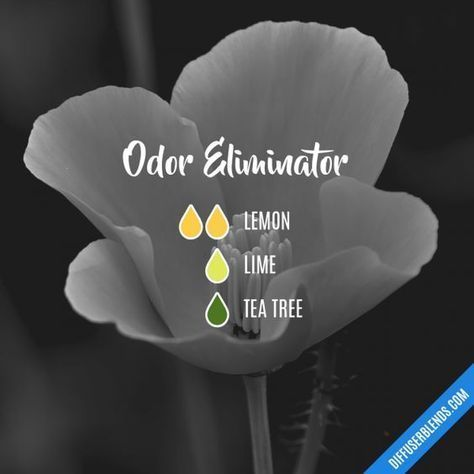 Odor Eliminator - Essential Oil Diffuser Blend #EssentialOilBlends
