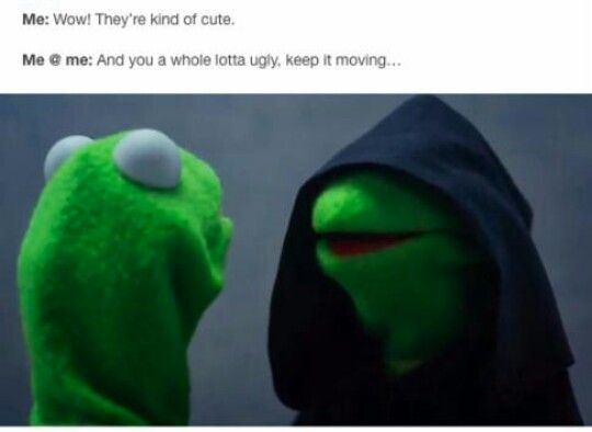 @TRIUMPHANTLOVE   bruh, for real   Funny, Memes, Fresh memes