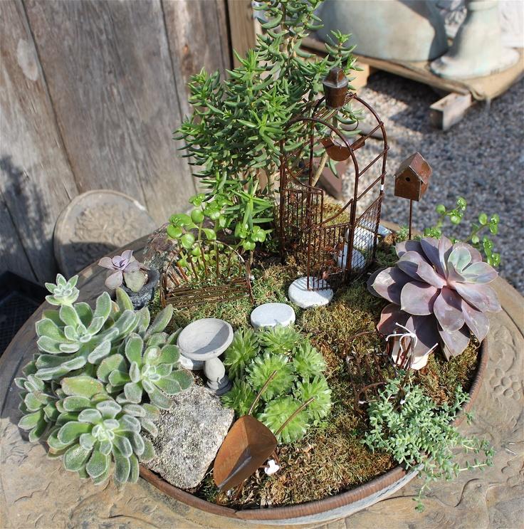 Succulent Fairy Garden -- ABC of Succulents Garden in miniature