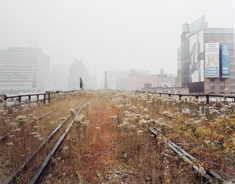 Close to where I used to live... | Joel Sternfeld. The High Line.