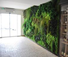 Groene wanden - Moskunst