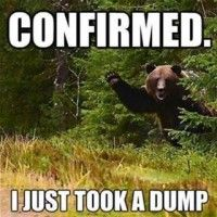 Urban Dictionary: Does a bear shit in the woods?