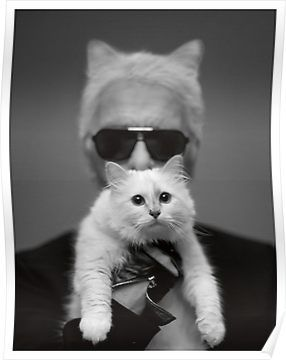 Karl Lagerfeld and Choupette  Poster – Redbubble