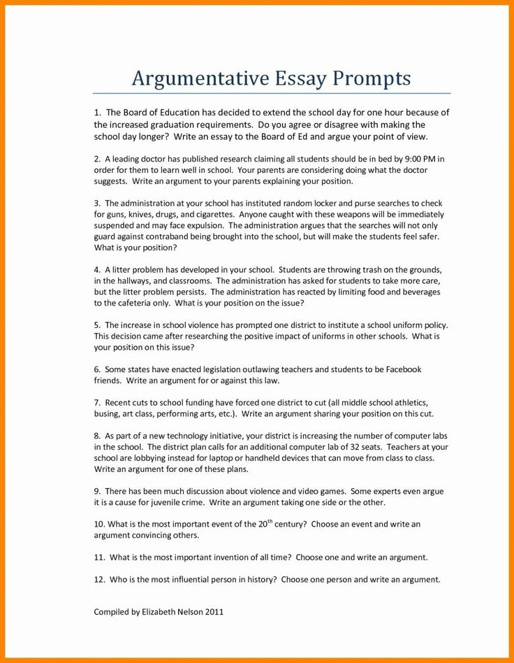 Argumentative essay for high school students