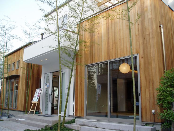 17 Best Images About Project Zonnedauw Limmens Forrest On