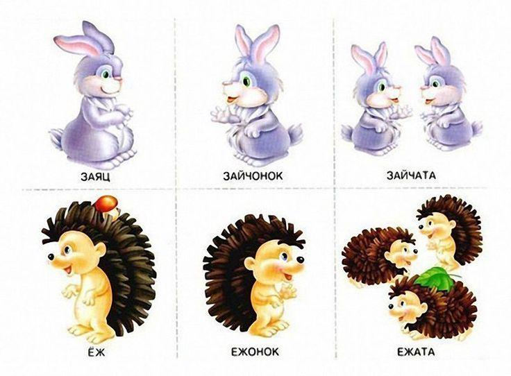 Картинки с изображением животных во множественном числе
