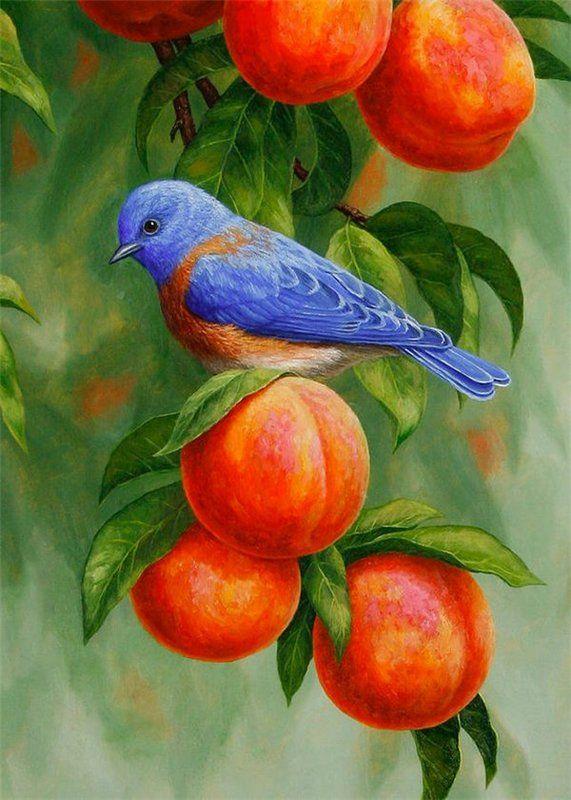 фильма птица на ветке рисунок красками плазмолифтинга была